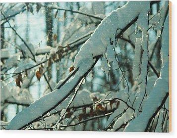 Faery Forest Wood Print by Rebecca Sherman