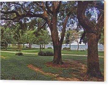 Fairhope Lower Park 2 Trees Wood Print by Michael Thomas