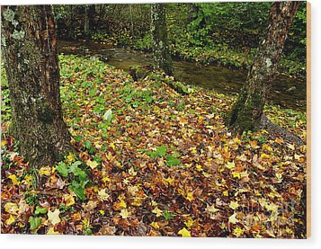 Fall Along Middle Fork Wood Print by Thomas R Fletcher