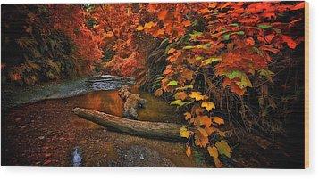 Fall Along The Creek Wood Print by Thomas Born