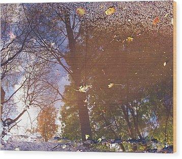 Fall Asphalt Wood Print by Anna Villarreal Garbis