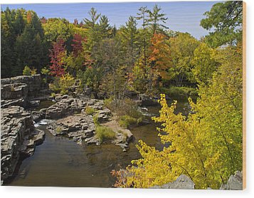 Wood Print featuring the photograph Fall At The Eau Claire Dells by Judy  Johnson