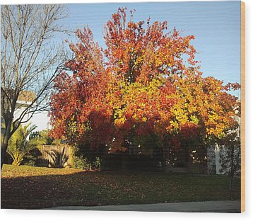 Fall Color 4 Wood Print by Remegio Onia