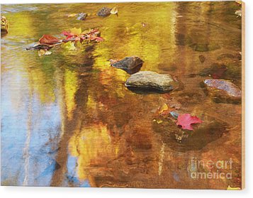 Fall Color In Stream Wood Print by Charline Xia