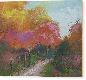 Fall Color Wood Print by Robert Bissett