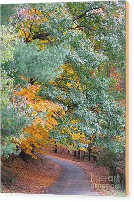 Fall Colored Country Road Wood Print