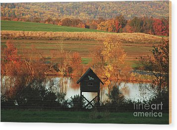 Wood Print featuring the photograph Fall Colors 1 by Vilas Malankar