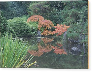 Wood Print featuring the photograph Fall Colors by Jerry Cahill