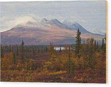 Fall Colors Of Alaska Wood Print