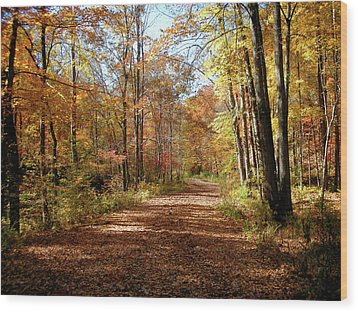 Wood Print featuring the photograph Fall Coming On by Paul Mashburn