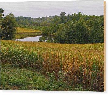 Fall Corn In Virginia Countryside Wood Print by Richard Singleton