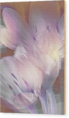 Fall Crocus Wood Print by Jill Balsam