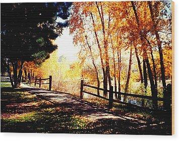 Fall Day Wood Print by David Alvarez