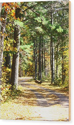 Wood Print featuring the photograph Fall Day To Remember by Paula Brown
