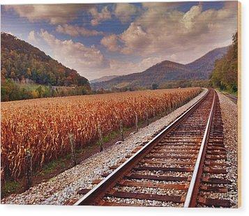 Fall Days Wood Print by Janice Spivey
