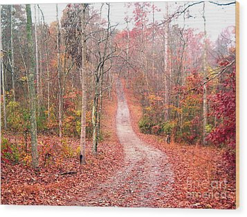 Wood Print featuring the photograph Fall Drive by Gretchen Allen
