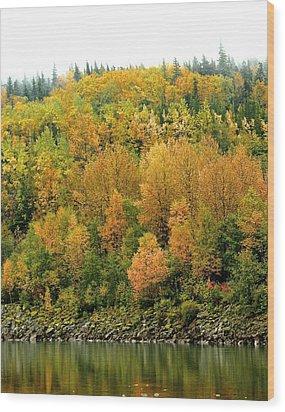 Fall Foliage Wood Print by Sylvia Hart