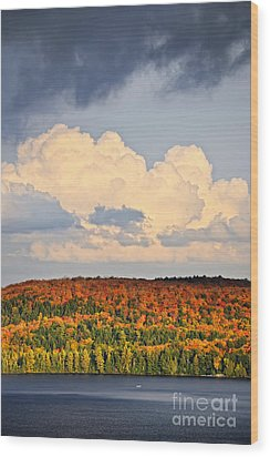 Fall Forest And Lake Wood Print by Elena Elisseeva