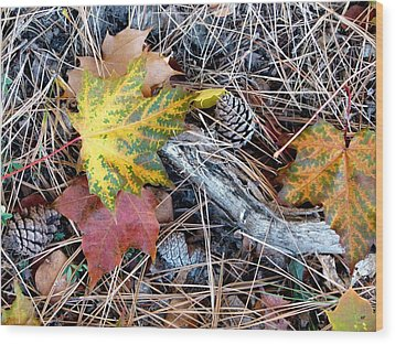 Fall Forest Floor Wood Print by Will Borden