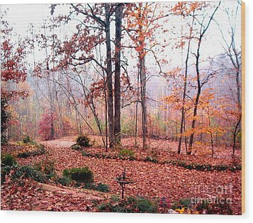 Wood Print featuring the photograph Fall by Gretchen Allen