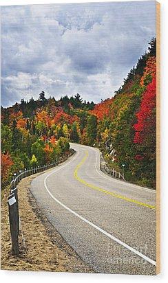 Fall Highway Wood Print by Elena Elisseeva