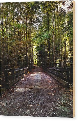 Wood Print featuring the photograph Fall Hiking Trail by Janice Spivey