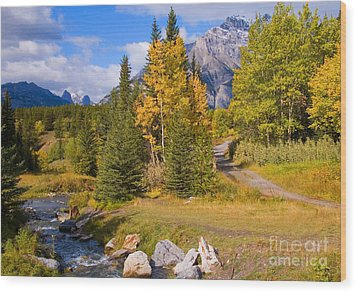 Fall In Banff National Park Wood Print by Bob and Nancy Kendrick