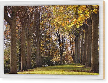 Wood Print featuring the photograph fall in Folsom by Rima Biswas