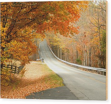 Fall In Kentucky Wood Print by Sylvia Hart