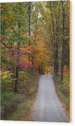Fall In Southern Indiana Wood Print by Melissa Wyatt