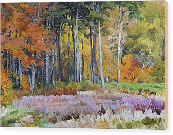 Fall In The Arboretum Wood Print