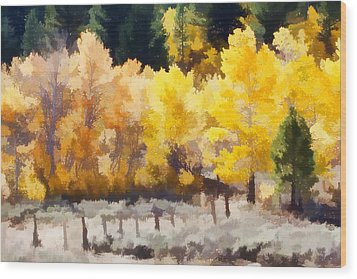 Fall In The Sierra Wood Print by Carol Leigh