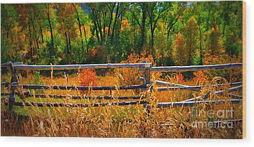 Wood Print featuring the photograph Fall  by Janice Westerberg
