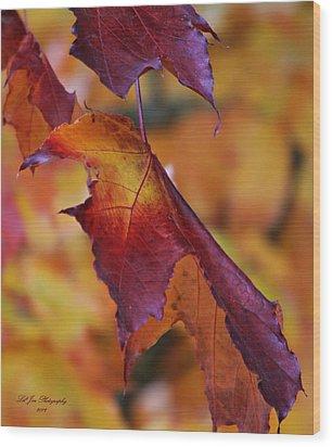 Fall Leaf Wood Print by Jeanette C Landstrom