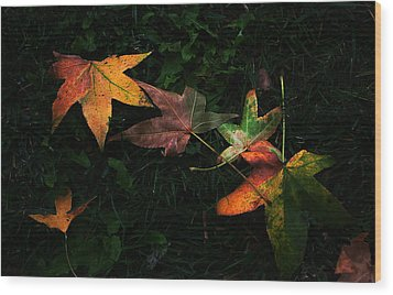 Fall Leaves On Grass Wood Print