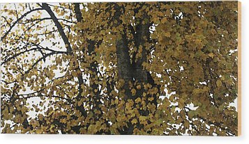 Fall Leaves Panorama Wood Print by Mary Gaines