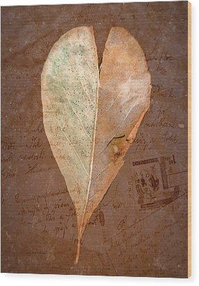 Fall Love Letters Wood Print by Cindy Wright