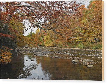 Wood Print featuring the photograph Fall On Laurel Hill Creek by Dan Myers