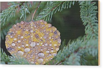Fall Ornament Wood Print by Shirley Mailloux