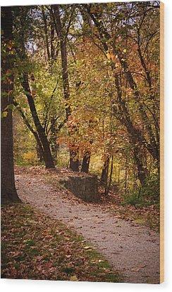 Fall Path Wood Print