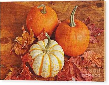 Fall Pumpkins And Decorative Squash Wood Print