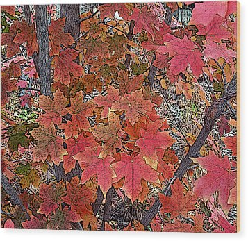 Fall Red Wood Print by David Pantuso