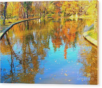 Fall Reflections Wood Print by Ana Maria Edulescu