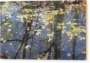 Wood Print featuring the photograph Fall Reflections by I'ina Van Lawick