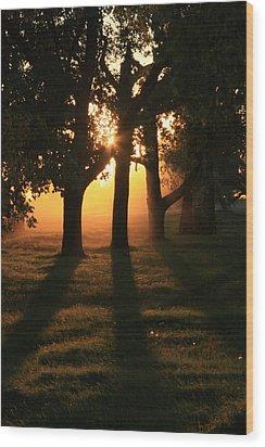 Fall Sunset Wood Print