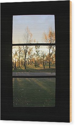 Fall Through The Window Wood Print