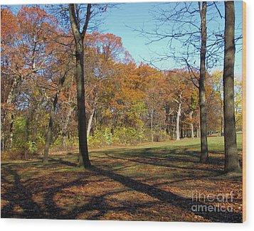 Fall Tree Shadows Wood Print by Cedric Hampton