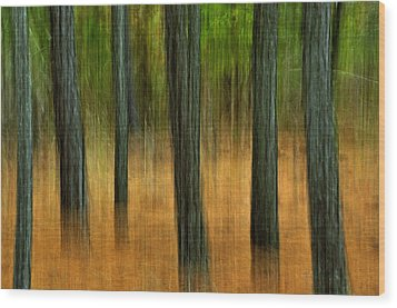 Wood Print featuring the photograph Fall Trees by Tamera James