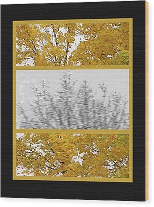 Fall Wind Triptych Wood Print by Steve Ohlsen