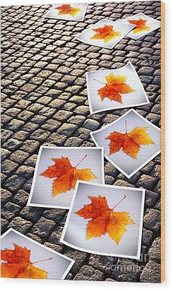 Fallen Autumn  Prints Wood Print by Carlos Caetano